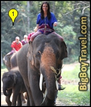 Best Elephant Camps near Chiang Mai in the Jungle Trekking Riding